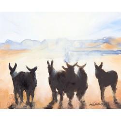 Les ânes devant le fort de St Martin