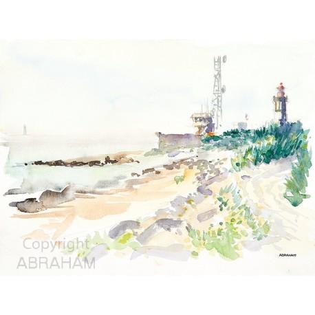 Semaphore Lighthouse Whale
