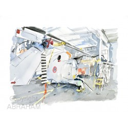 lynx dans son hangar